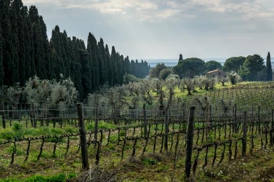 Toskana / Tuscany